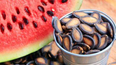 9 فوائد لبذور البطيخ للبشرة والشعر والصحة