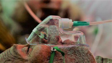 الكثير منهم قرروا استئصال عينهم.. أكثر من 8000 إصابة بالفطر الأسود في الهند