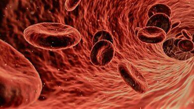 الإنتان..مرض في الدم يفتك بأنسجة جسدك وفي النهاية يقضي على حياتك