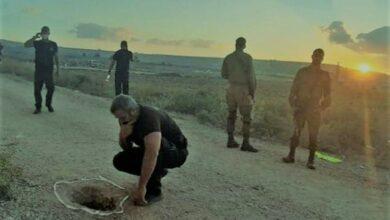 الجمهور يربط بين خطة هروب الأسرى الفلسطينيين و«مارد وشوشني».. ما القصة؟